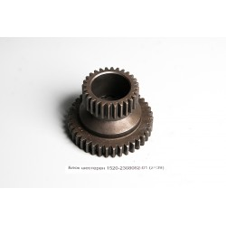 Set  Pinion  1520-2308062-01